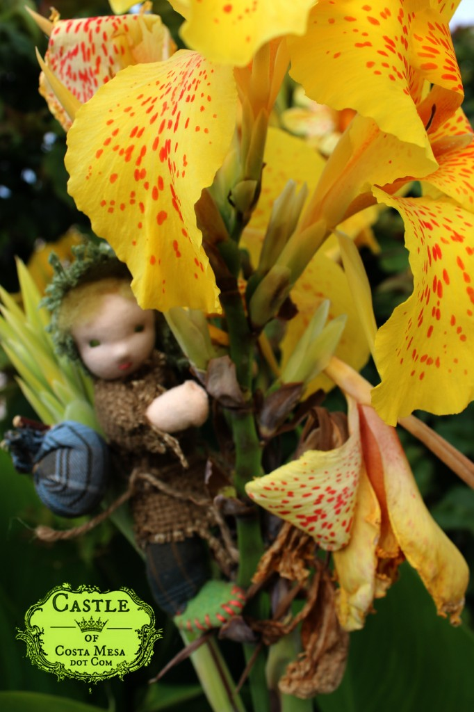 130927 The wanderer doll climbing a yellow tropical flower
