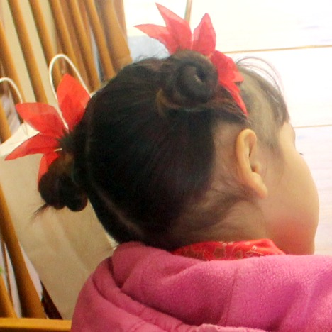 chinese hair bun - 468×468