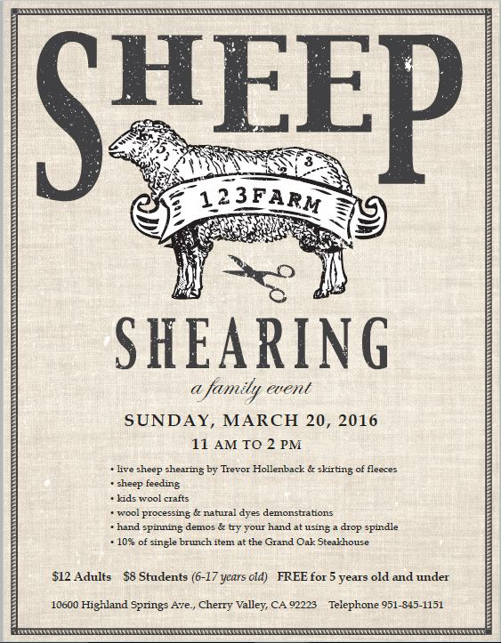 160320 Sunday Sheep Shearing Highland Springs Castle of Costa Mesa
