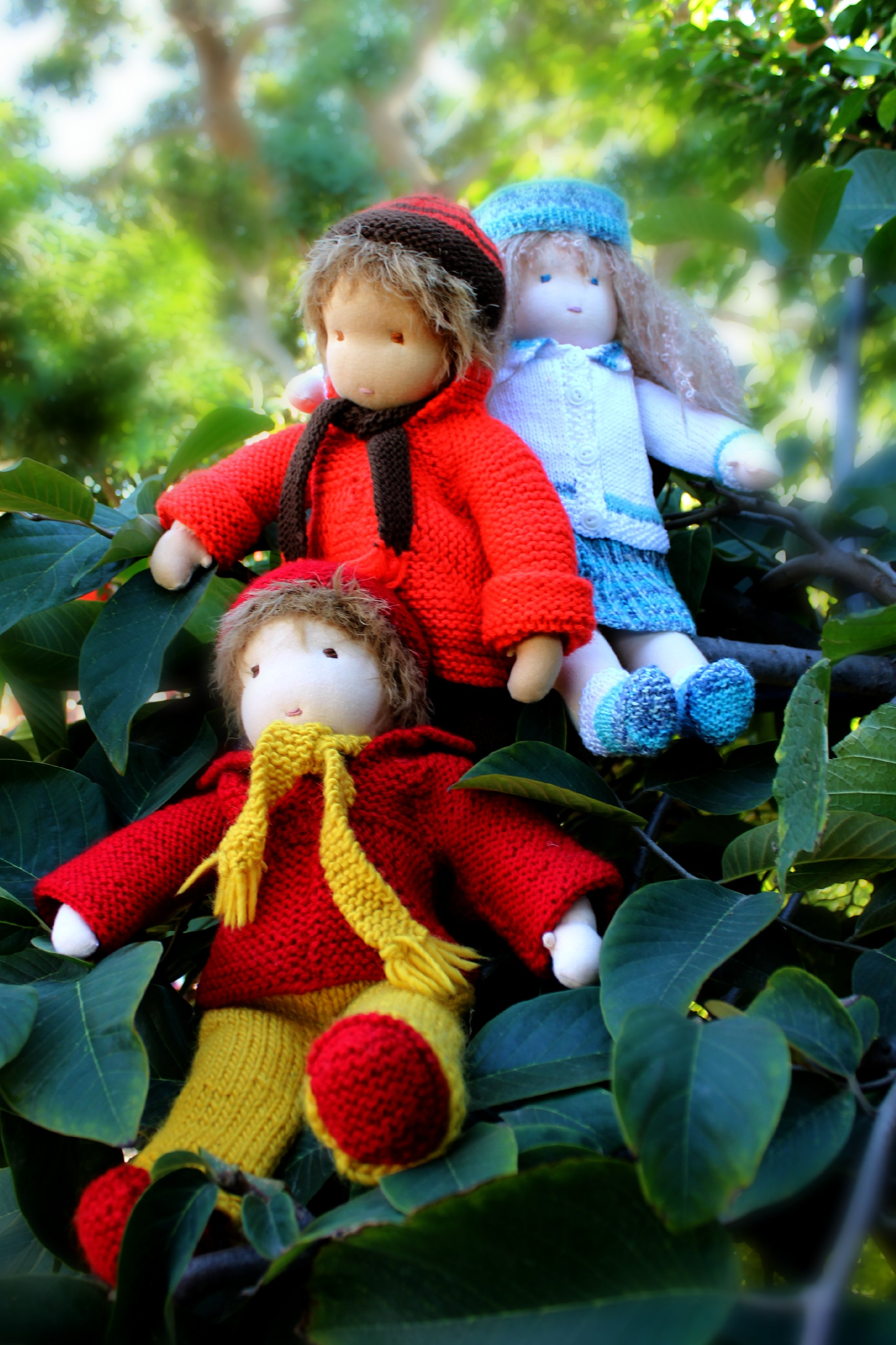 121219 Christine Newell's 3 16 inch Waldorf cuddle dolls sitting in the cherimoya tree 3