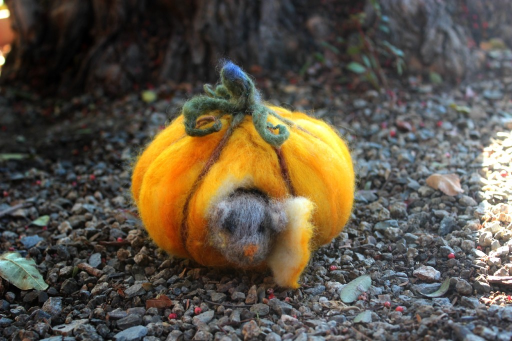 131015 Christine's dry needle-felted mouse in his pumpkin house with curly tendrils