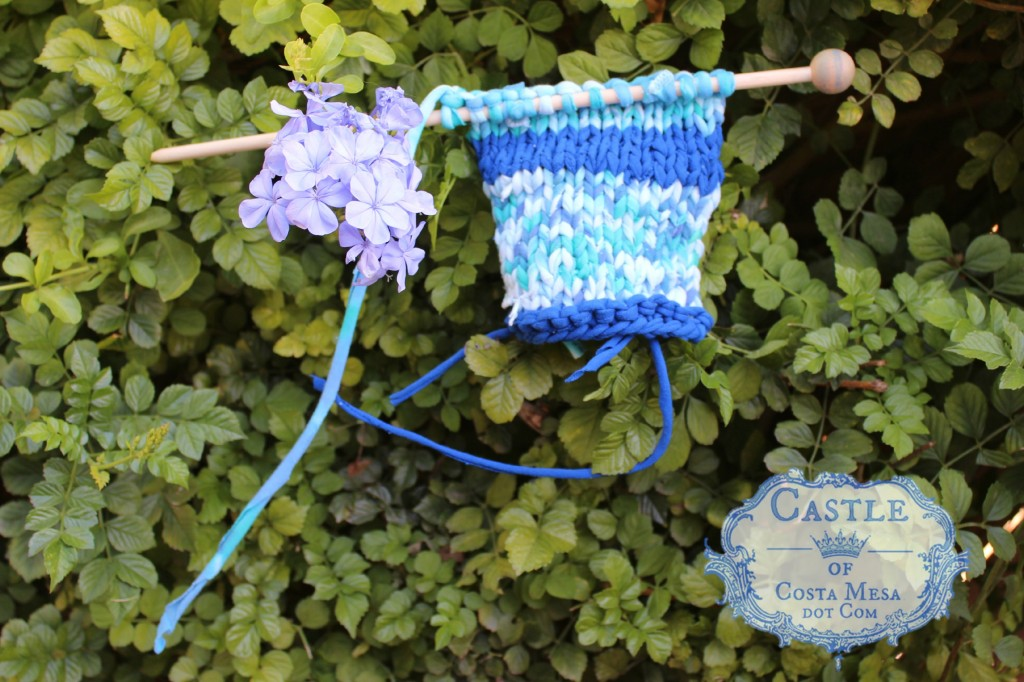 140915 Melissa's knitted T-shirt yarn rectangle in the plumbago hedge fence 2