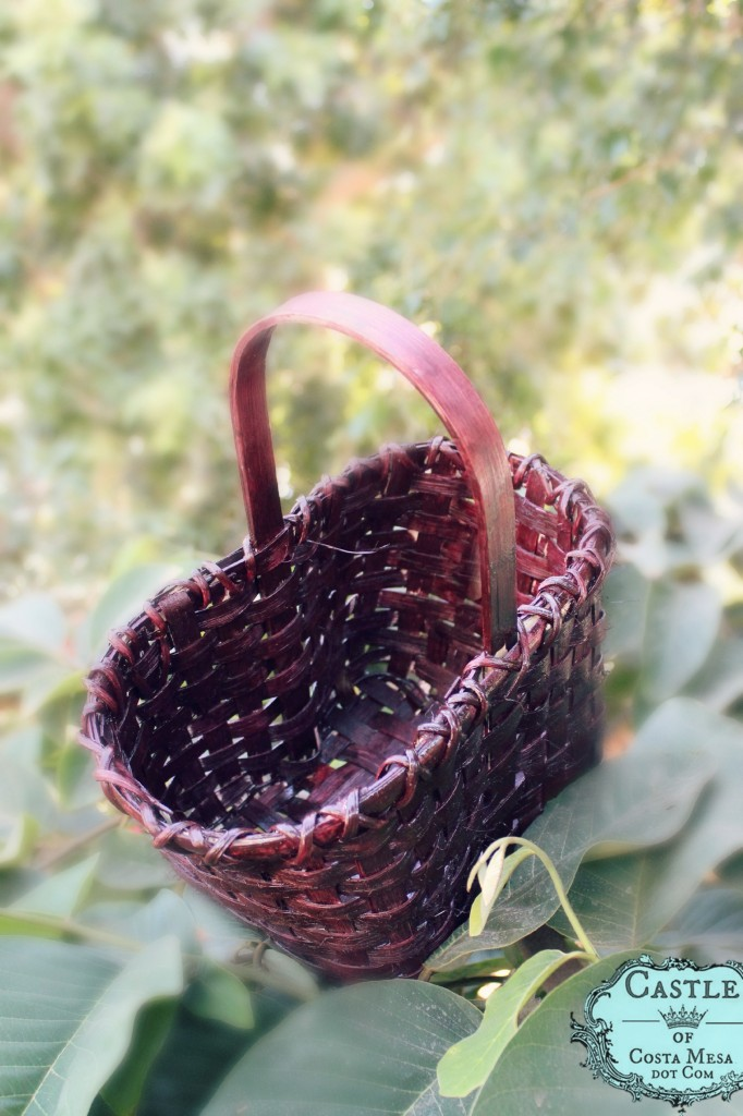 141007 Flat reed woven double wine bottle basket on cherimoya tree 2