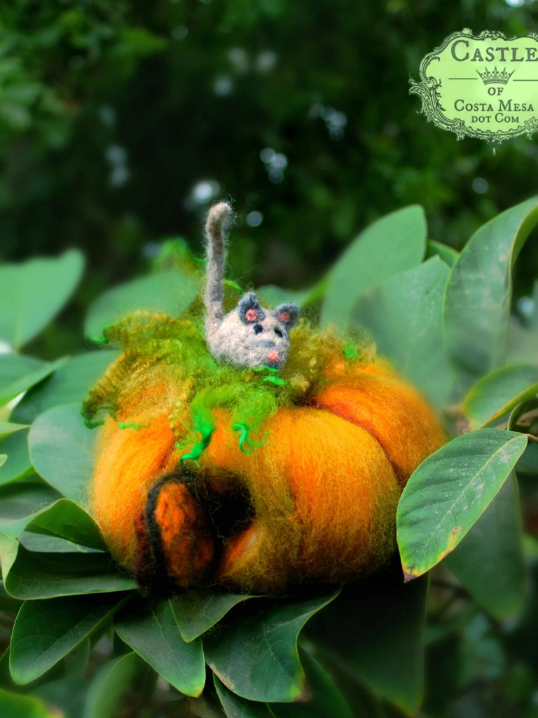 141020 Linda's grey mouse atop his pumpkin house 2
