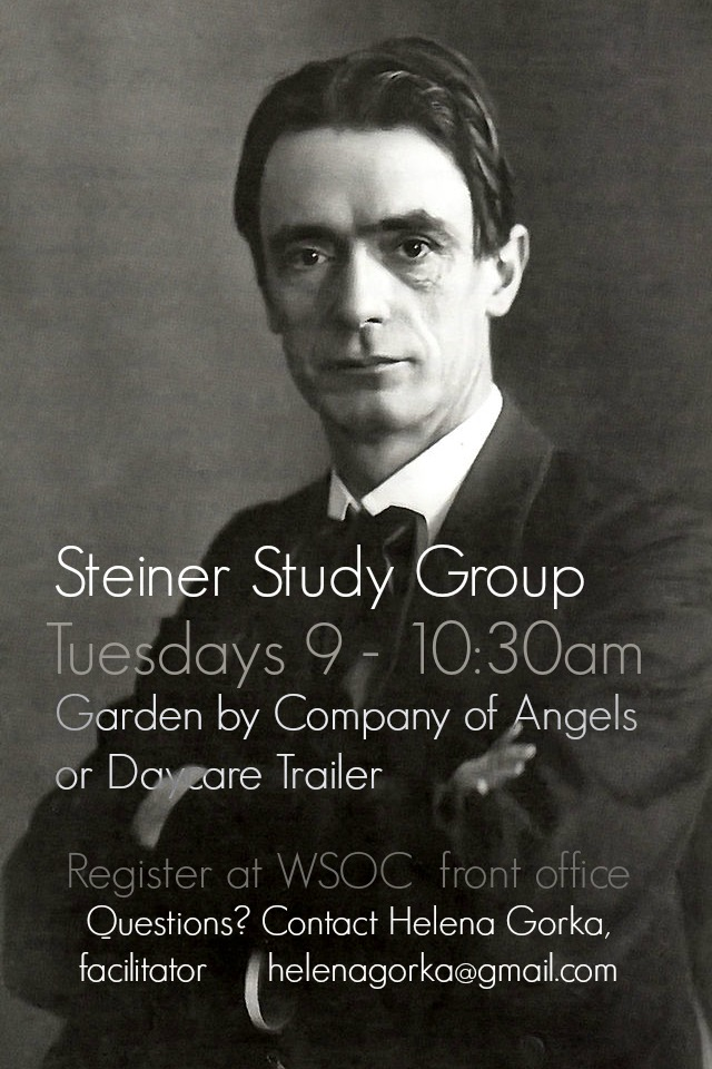 141113 Rudolf Steiner. Steiner Study Group poster