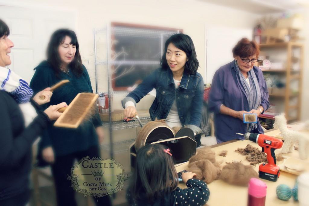 9173 150302 Linda Julie Gloria Katherine Gisela carding combing raw alpaca wool fleece